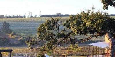 Sítio Pantanal Brotas, SP